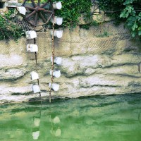 Roue à aube du bassin