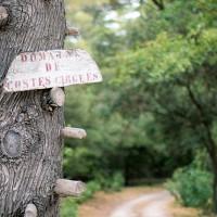 Bienvenue au domaine de Costes-Cirgues, vin bio sans sulfites ajoutés de Sommières, Gard, Languedoc